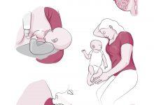Illustraties voor alle publicaties van Borstvoedingorganisatie La Leche League